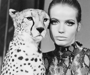 model, black and white, and Veruschka image