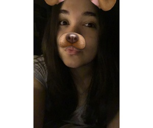 asian, european, and dog image