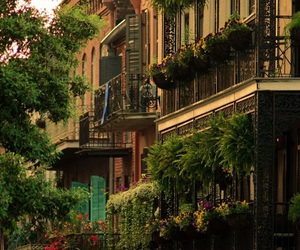 cities and new orleans image