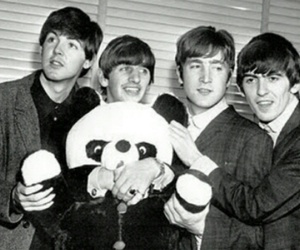 beatles, the beatles, and bear image