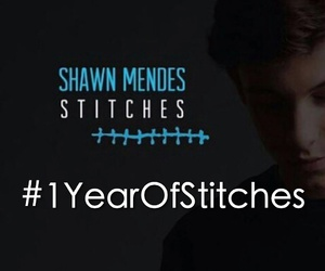 stitches and shawn mende image