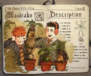 harry potter, art, and mandrake image