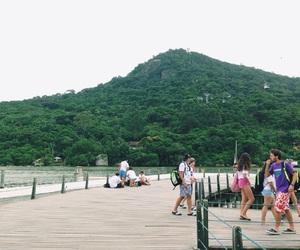 beach, brasil, and bridge image