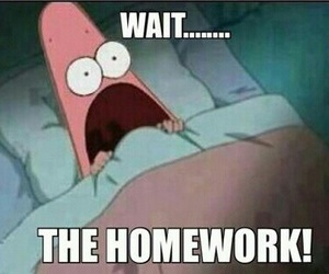 homework, funny, and school image