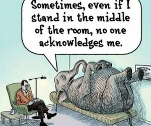animals, elephant, and humor image