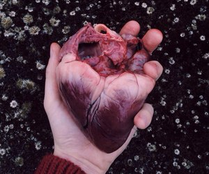 heart, flowers, and hand image