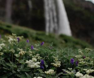 spring and waterfall image
