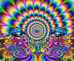 weed, trippy, and mushrooms image