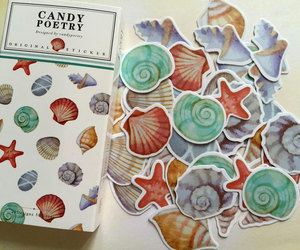 etsy, scrapbooking, and sea shell image