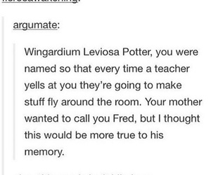 funny, harry potter, and fred weasley image