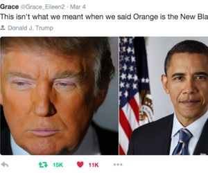 funny, obama, and donald trump image