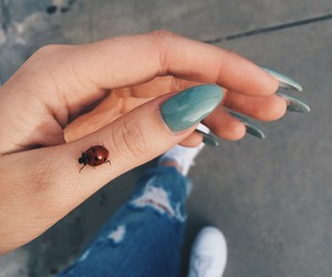 nails, ladybug, and blue image