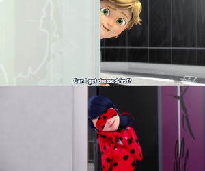 Adrien, Chat Noir, and funny image