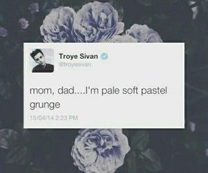 pastel, grunge, and troye sivan image