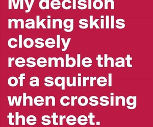 funny, squirrel, and decisions image