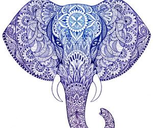 elephant and mandala image