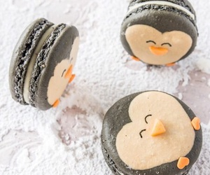 penguin, food, and macaroons image