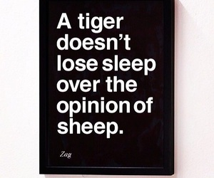 quotes, tiger, and sheep image