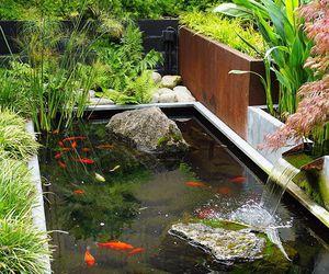 beautiful, zen, and nature image