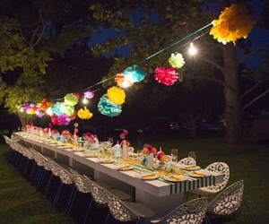 fiesta image