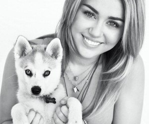 miley cyrus, dog, and miley image