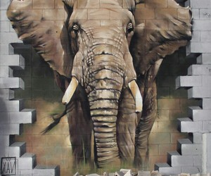 elephant, street art, and murales image