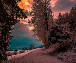 winter, landscape, and nature image