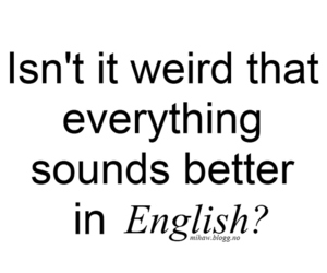 english, quote, and weird image