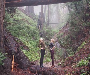 Taylor Swift, Karlie Kloss, and forest image