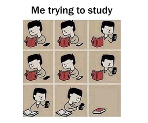 funny, study, and school image