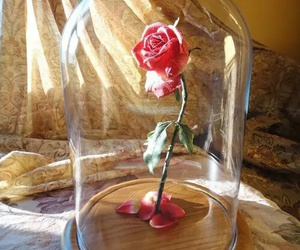 rose, disney, and flowers image