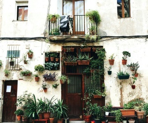 plants, house, and vintage image