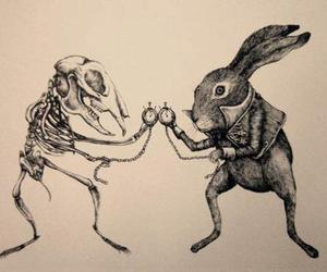 rabbit, alice, and skeleton image