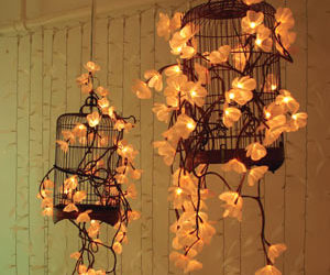 light, flowers, and cage image