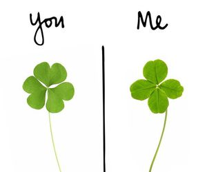 Citations, four leaf clover, and humor image