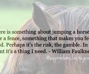 horse, jumping, and need image