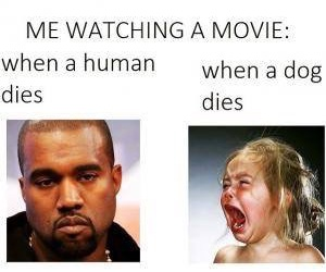 dog, funny, and movie image