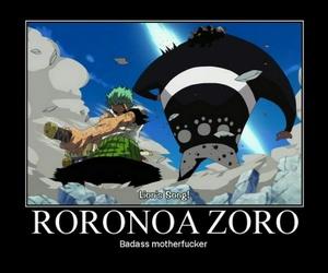 zoro image
