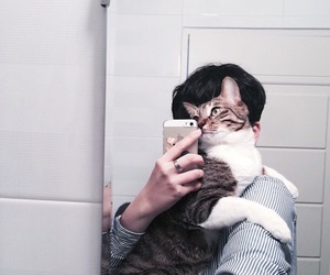 cat, ulzzang, and animal image