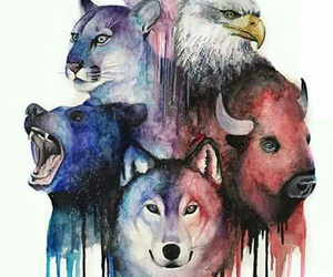 animal, art, and draw image