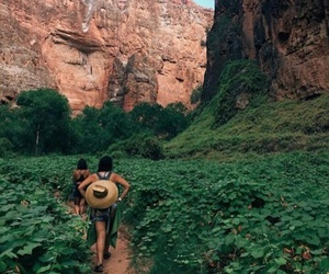 travel, green, and adventure image