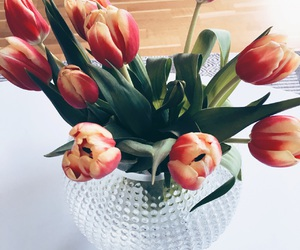 apartment, flowers, and style image