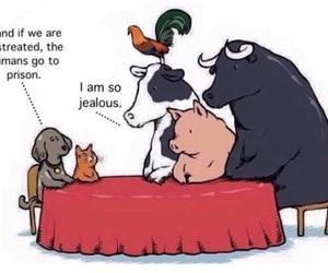 animals, true, and food image