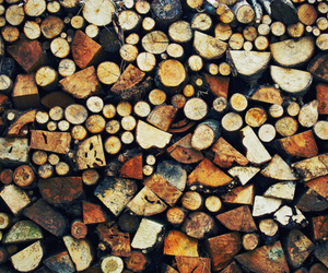 wood and firewood image