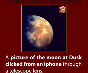 fact, moon, and true image