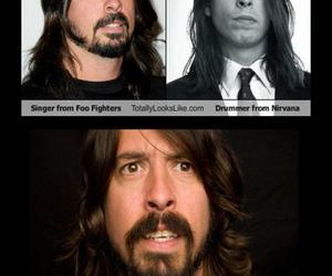 dave grohl, stupid, and troll image