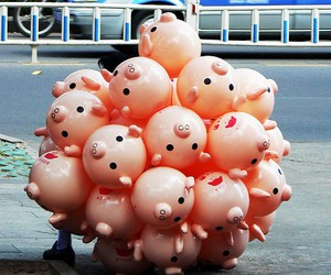 balloons, perfection, and pig image