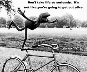 life, quote, and kermit image