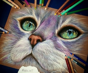 drawing, art, and cat image