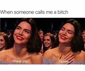 funny, bitch, and kendall jenner image
